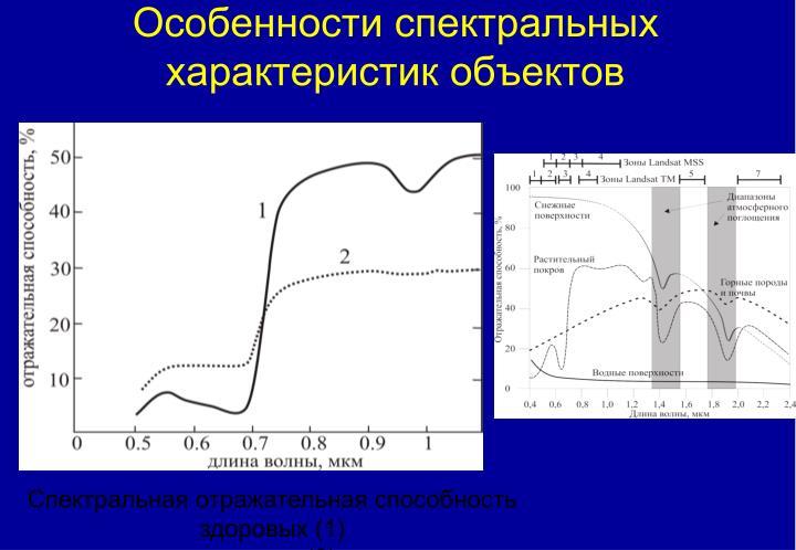 Особенности спектральных характеристик объектов