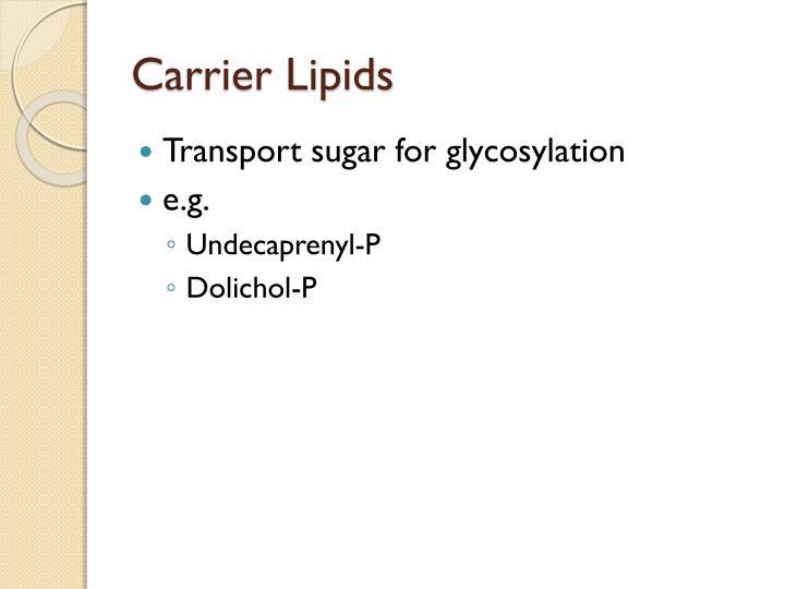Carrier Lipids