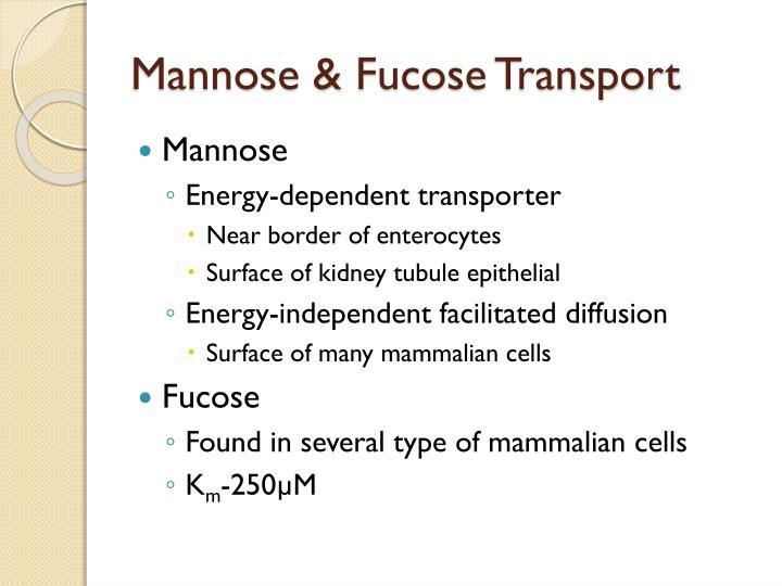 Mannose &