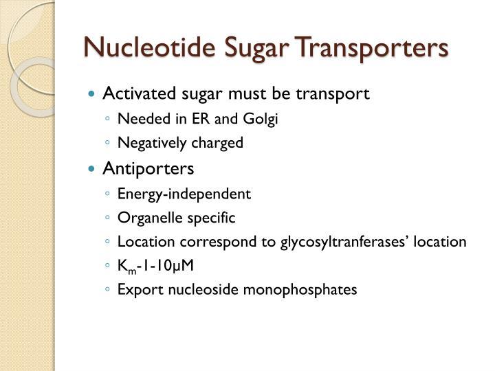 Nucleotide Sugar Transporters
