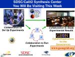 sdsc calit2 synthesis center you will be visiting this week