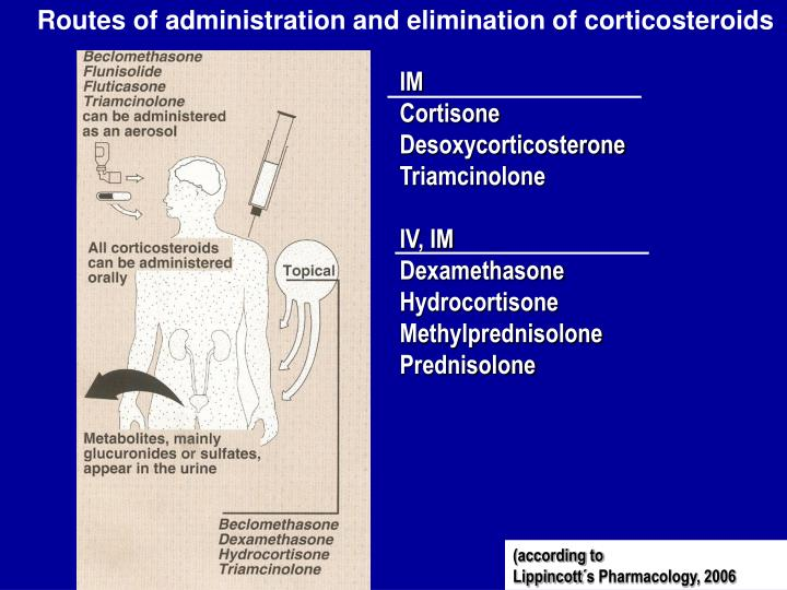 Routes of administration and elimination of corticosteroids