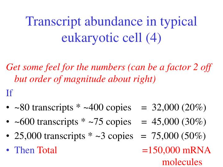 Transcript abundance in typical eukaryotic cell (4)