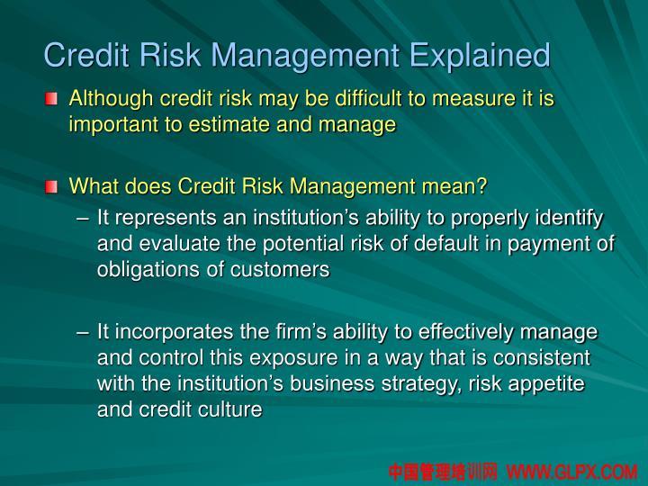 Credit Risk Management Explained