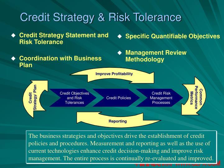 Credit Strategy & Risk Tolerance