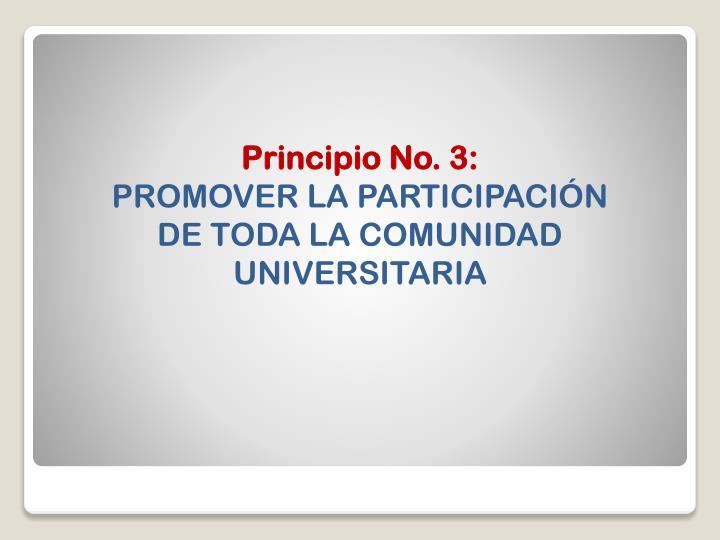Principio No. 3: