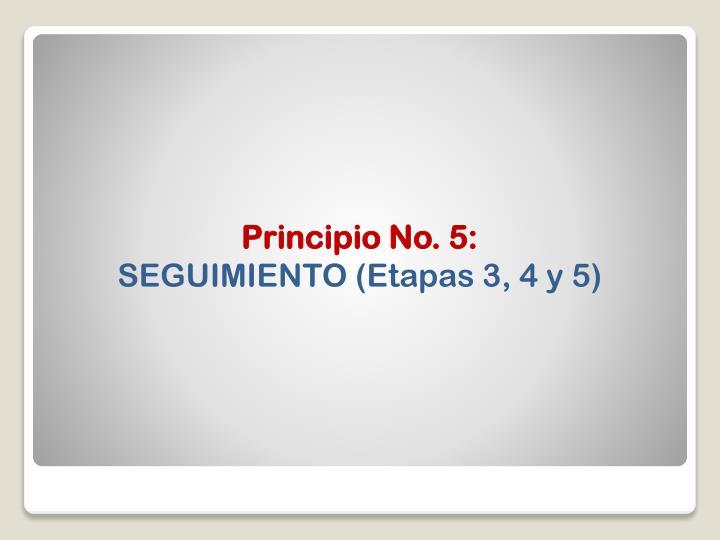 Principio No. 5: