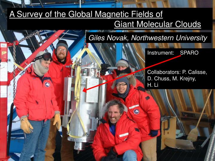 A Survey of the Global Magnetic Fields of