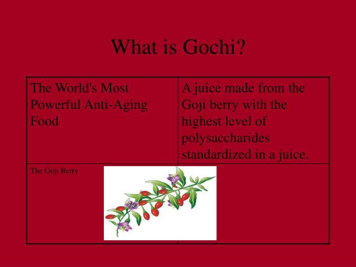 What is gochi