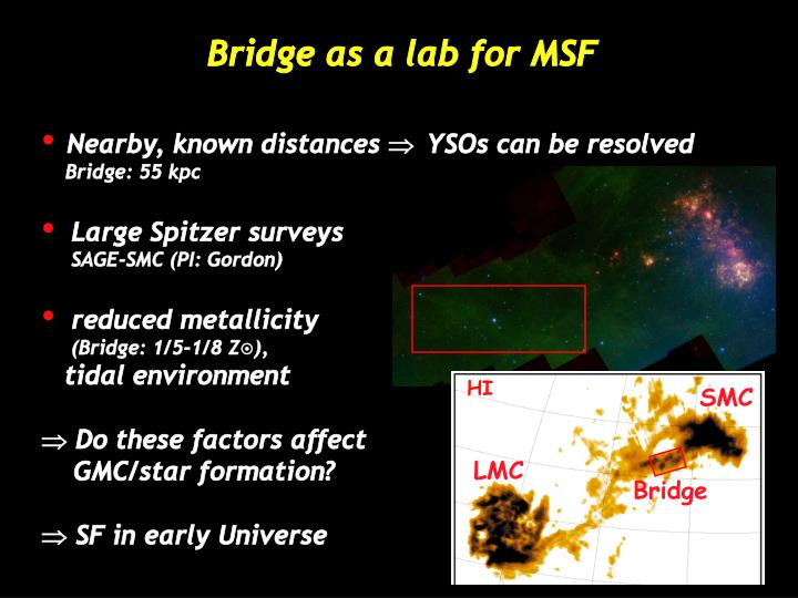 Bridge as a lab for msf