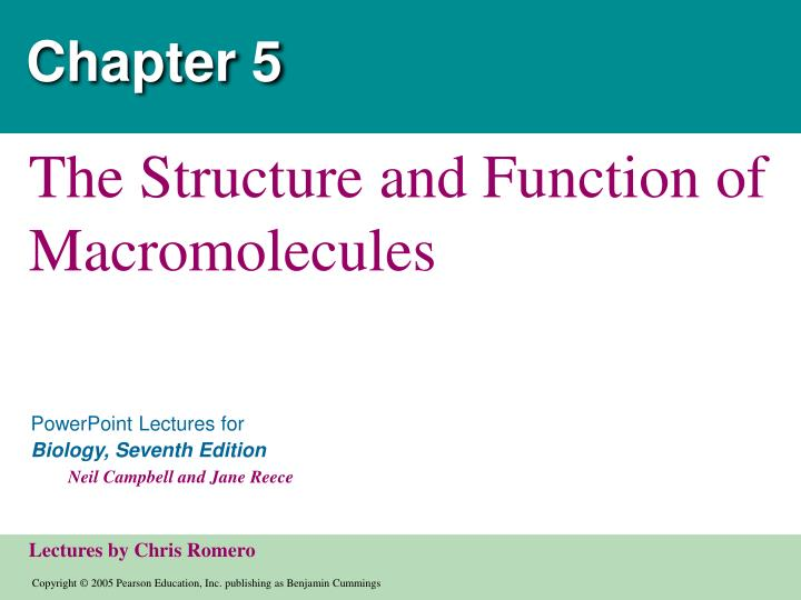 chapter 5 the structure and function 1 chapter 5 - the structure and function of large biological molecules outline i macromolecules ii carbohydrates – simple and complex iii lipids – triglycerides (fats and oils),.