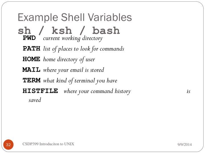 Example Shell Variables