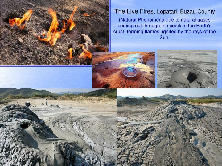 The Live Fires