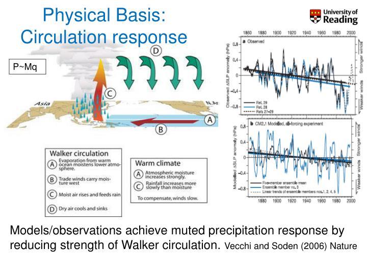 Physical Basis: Circulation response