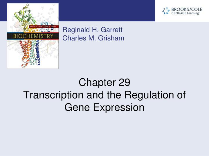 chapter 29 transcription and the regulation of gene expression n.
