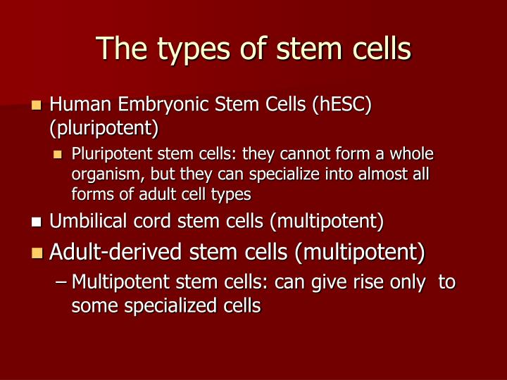The types of stem cells