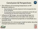 conclusion perspectives