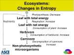 ecosystems changes in entropy1