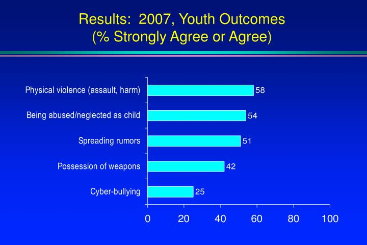 Results:  2007, Youth Outcomes