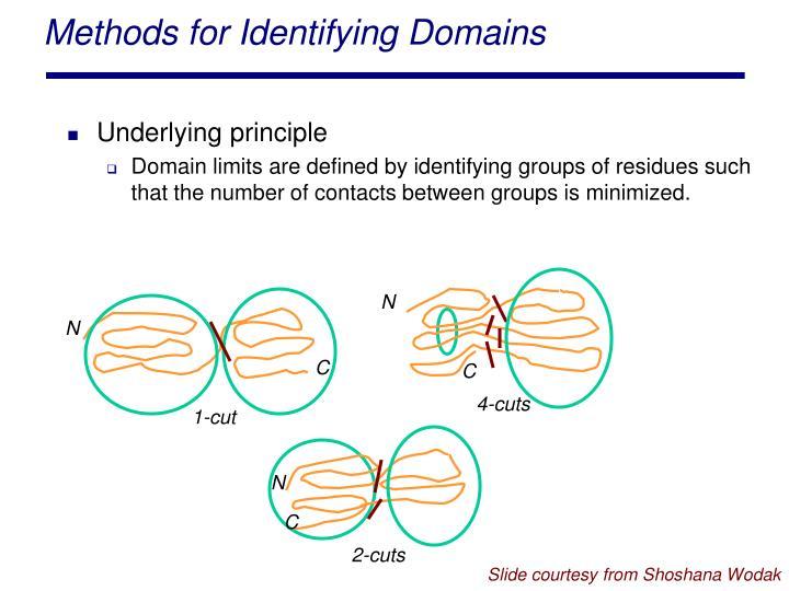 Methods for Identifying Domains