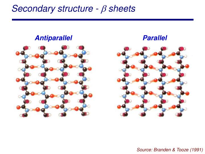 Secondary structure -