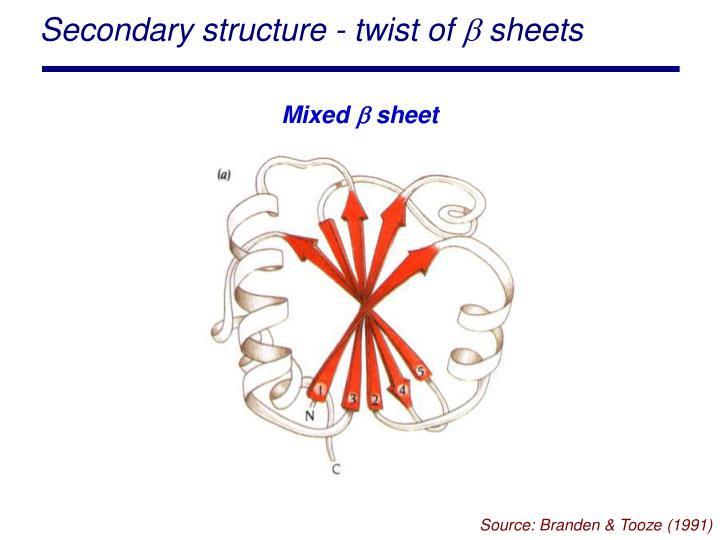 Secondary structure - twist of