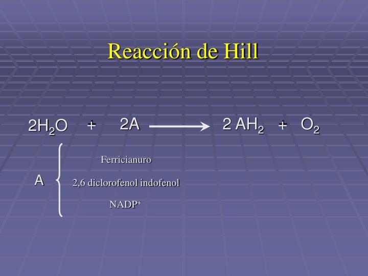 Reacción de Hill