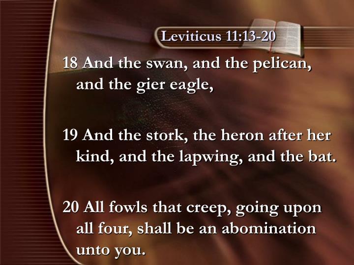Leviticus 11:13-20