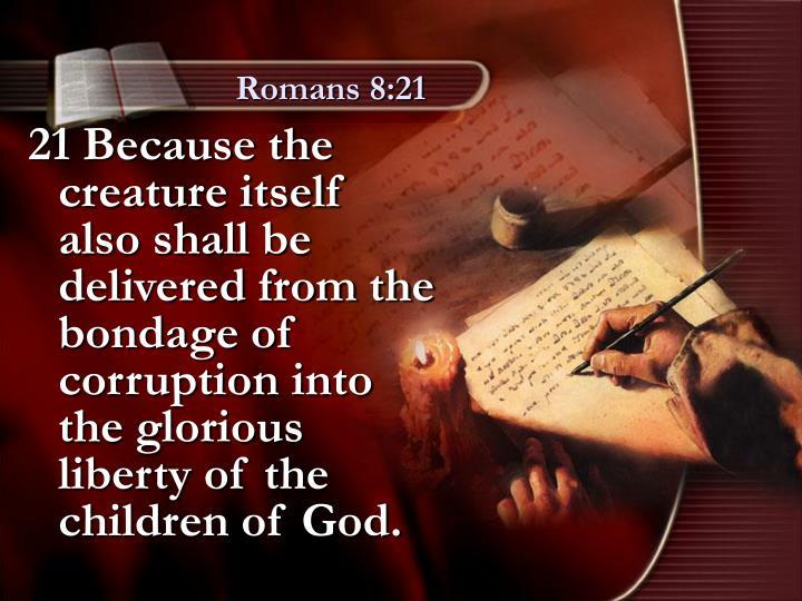 Romans 8:21
