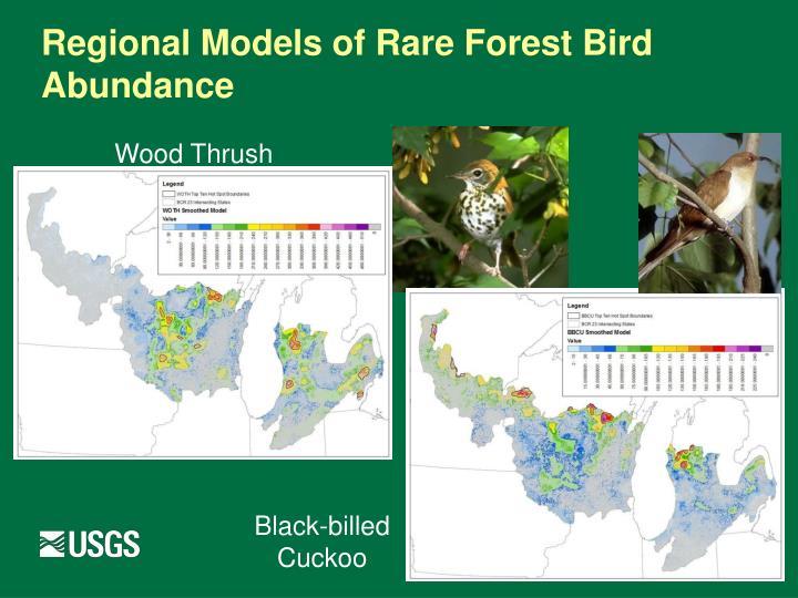 Regional Models of Rare Forest Bird Abundance