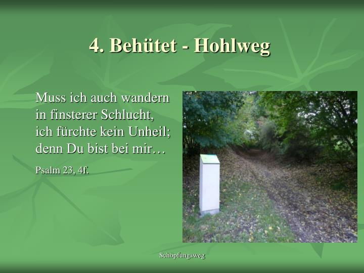 4. Behütet - Hohlweg