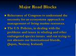 major road blocks