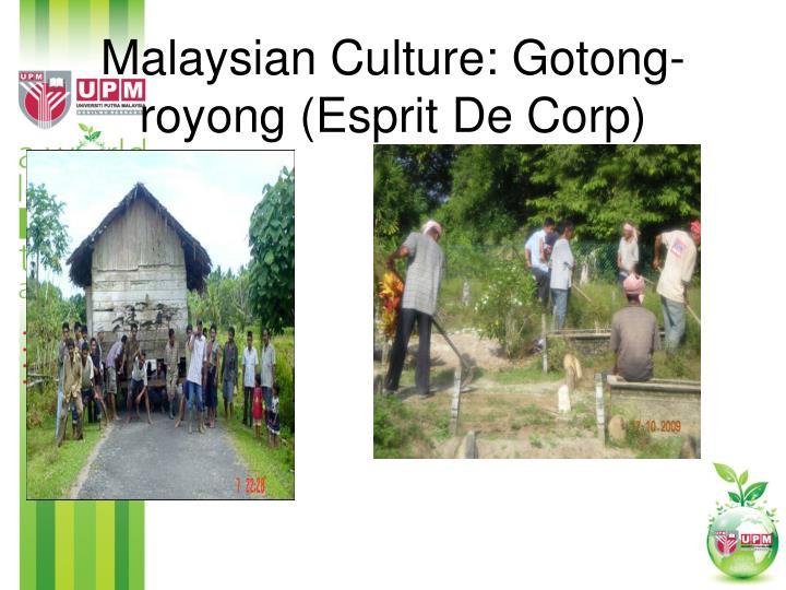 Malaysian Culture: Gotong-royong (Esprit De Corp)