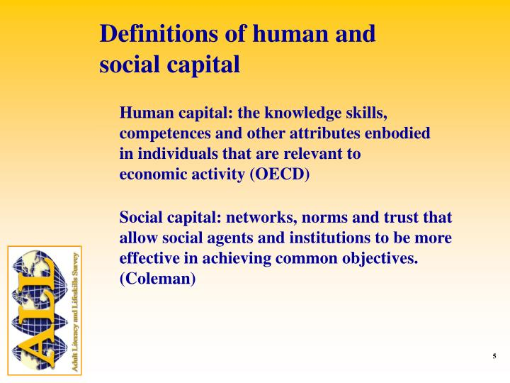 Definitions of human and social capital