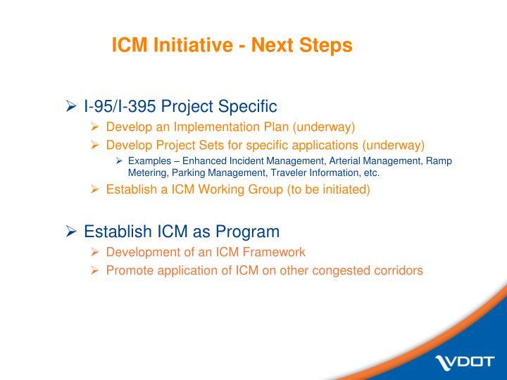 ICM Initiative - Next Steps