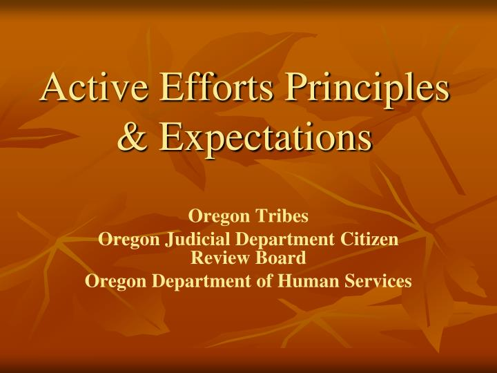 Active efforts principles expectations