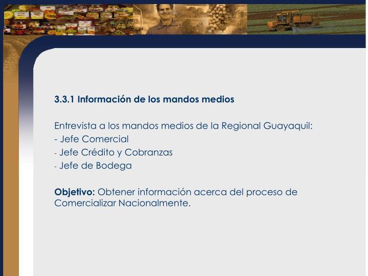 3.3.1 Información de los mandos medios