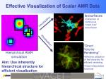 effective visualization of scalar amr data