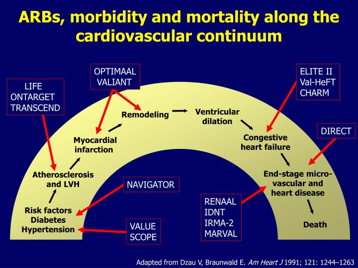 ARBs, morbidity and mortality along the cardiovascular continuum