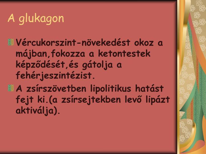 A glukagon