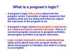 what is a program s logic