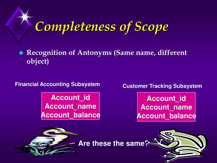 Completeness of Scope