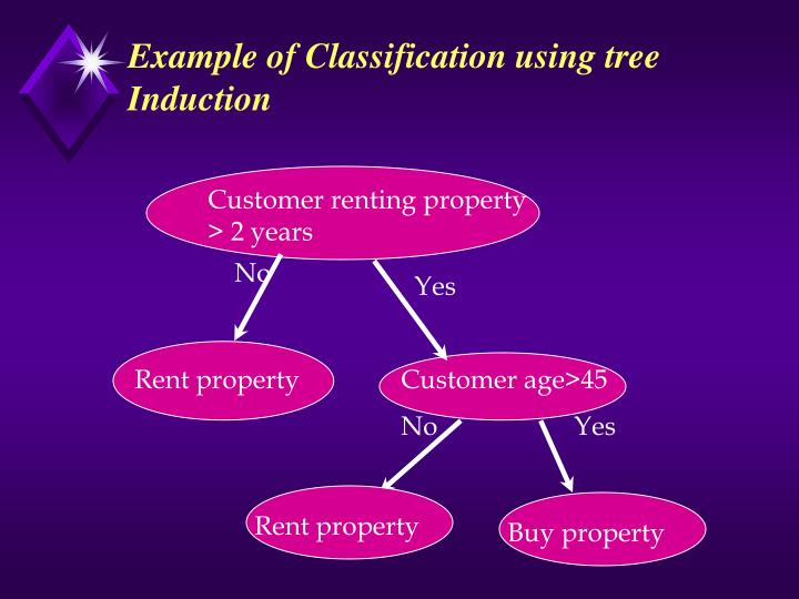 Example of Classification using tree Induction