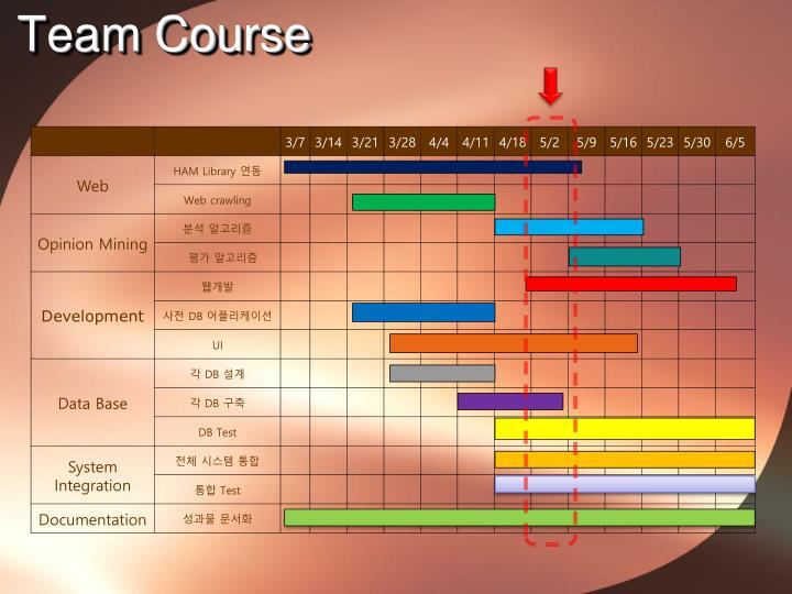 Team Course