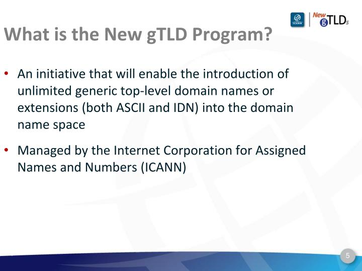 What is the New gTLD Program?