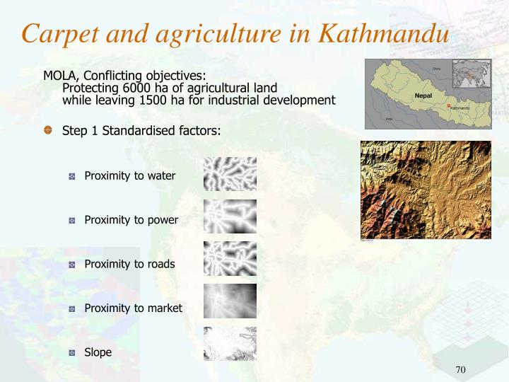 Carpet and agriculture in Kathmandu