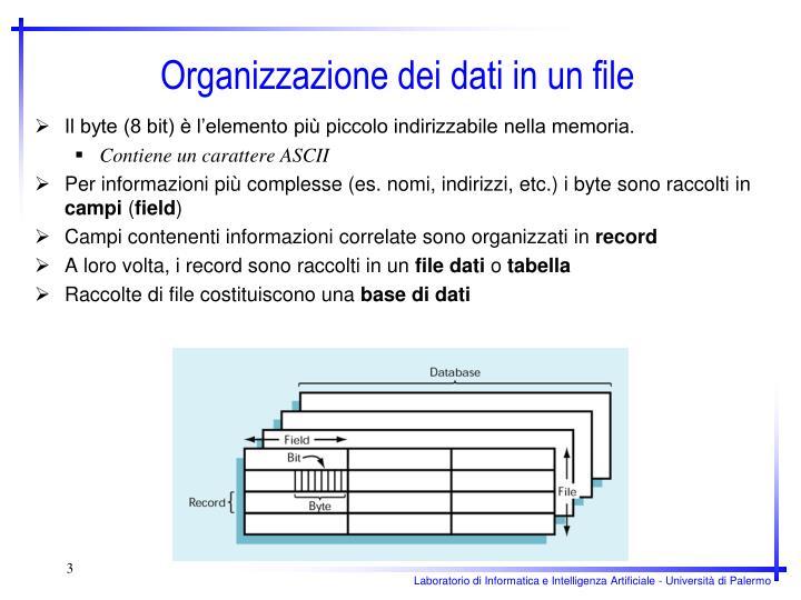 Organizzazione dei dati in un file