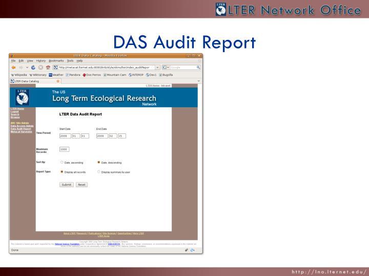 DAS Audit Report