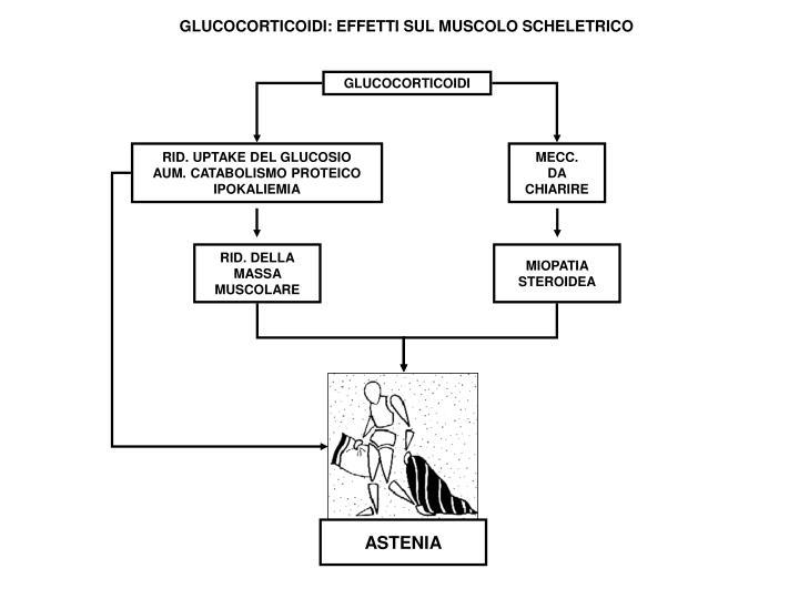 MIOPATIA STEROIDEA