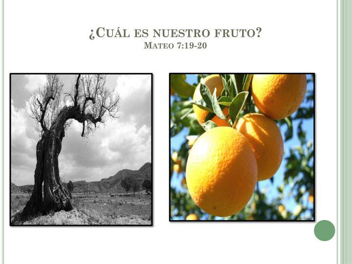 ¿Cuál es nuestro fruto?